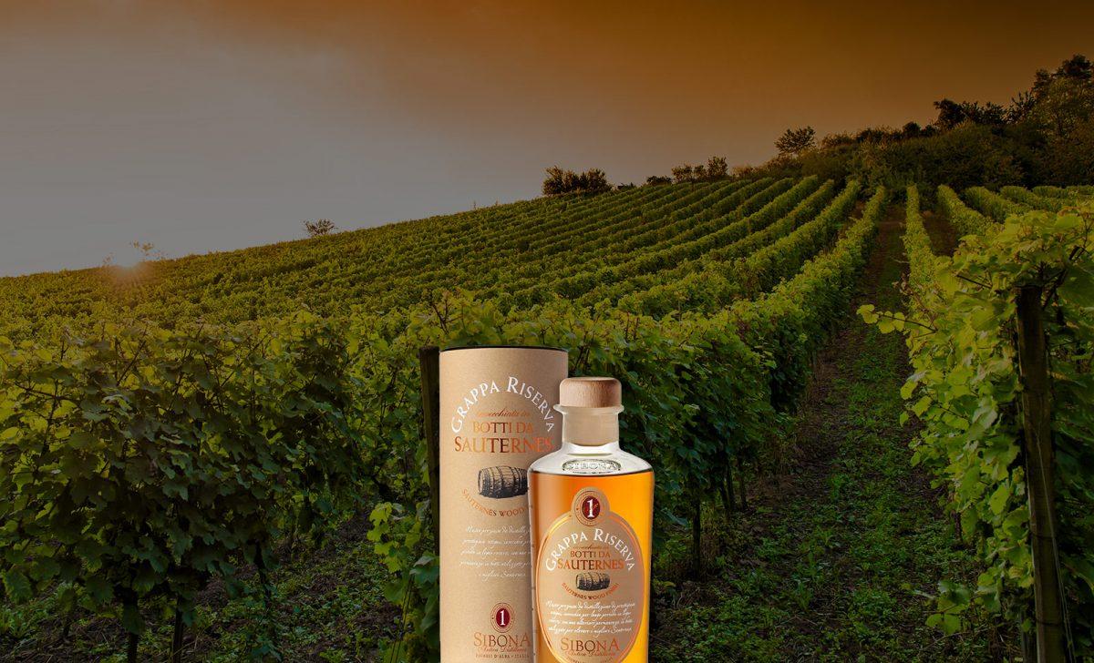 Grappa Riserva in botti da Sauternes - Distilleria Sibona